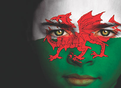 Welsh flag facepaint