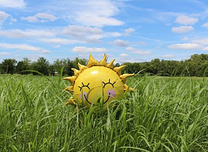 Sunshine balloon in field