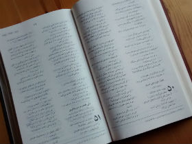 New Iranian Bible to tackle 'scripture famine'