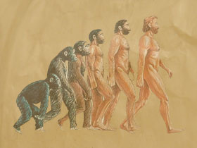 Can a Christian believe in evolution?